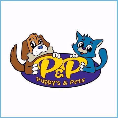Puppys And Pets, Alimentos, veterinaria higiene y belleza para mascotas en Victoria, Región de la Araucanía, primera ciudad digitalizada de Chile.