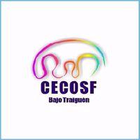 CECOSF, comuna de Victoria, Región de la Araucanía, primera ciudad digitalizada de Chile